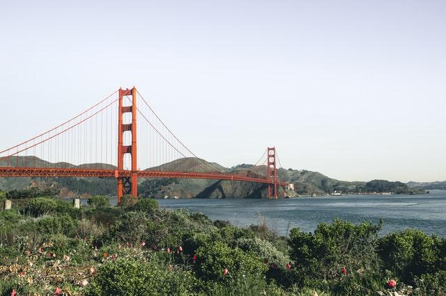 In Person San Francisco Criminal Case Lookup